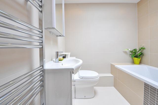 bathroom-1336164_640
